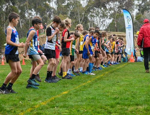 2020 State Cross Country Championships Decision Update